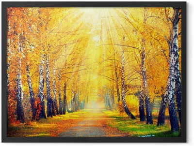 Autumn in the park Framed Poster