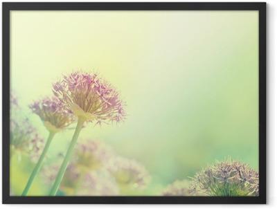 Blühende Zwiebeln Framed Poster