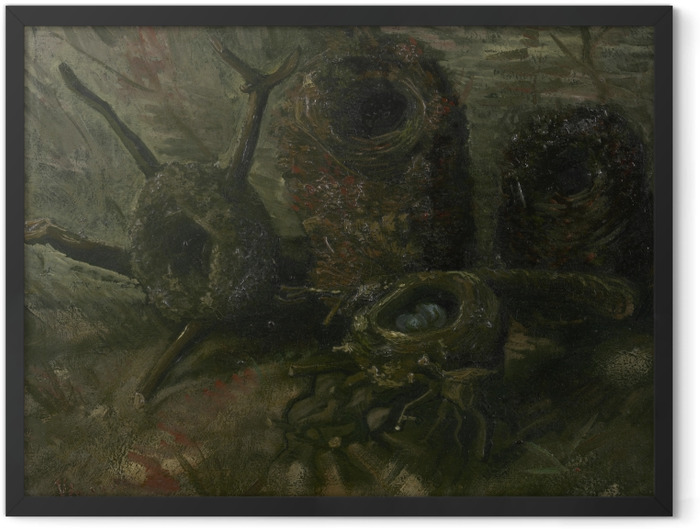 Gerahmtes Poster Vincent van Gogh - Vogelnester - Reproductions