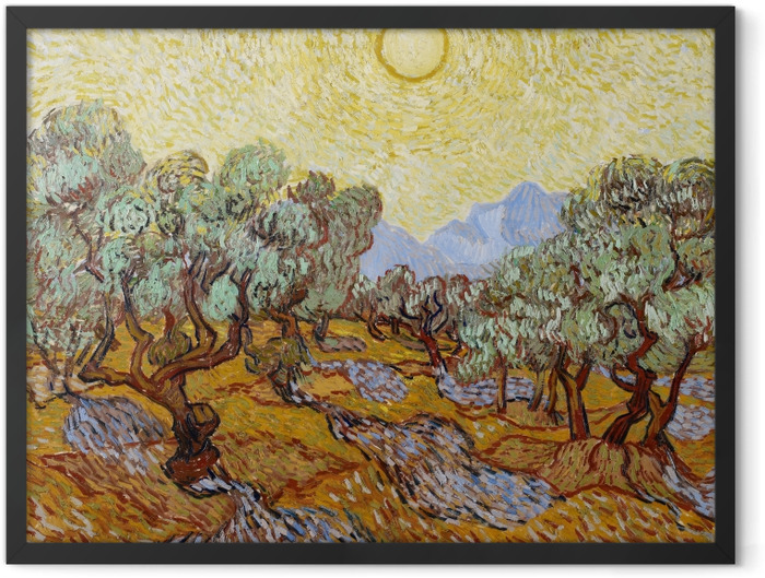 Gerahmtes Poster Vincent van Gogh - Olivengarten - Reproductions