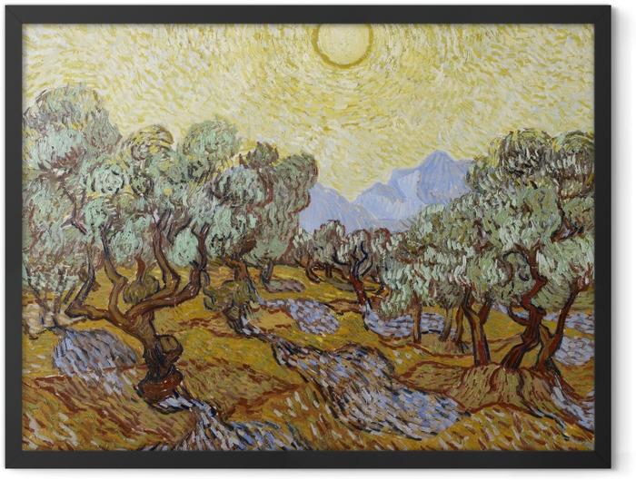 Poster en cadre Vincent van Gogh - Oliveraie - Reproductions
