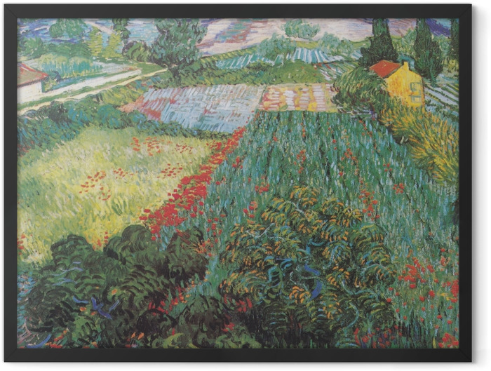 Gerahmtes Poster Vincent van Gogh - Feld mit Mohnblumen - Reproductions