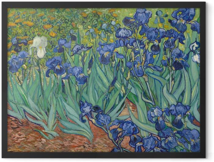 Gerahmtes Poster Vincent van Gogh - Iris - Reproductions