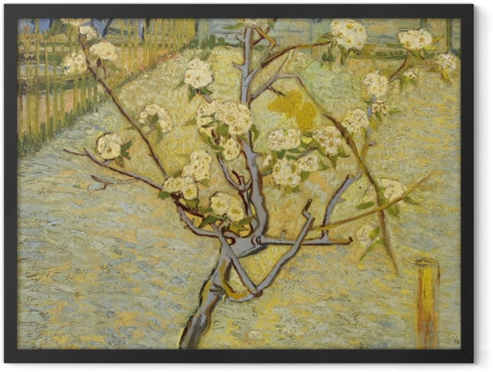 Gerahmtes Poster Vincent van Gogh - Blühender Pfirsichbaum - Reproductions