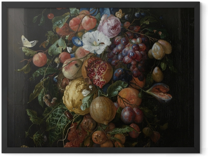 Gerahmtes Poster Jan Davidsz - Festoon of Fruit and Flowers - Reproduktion