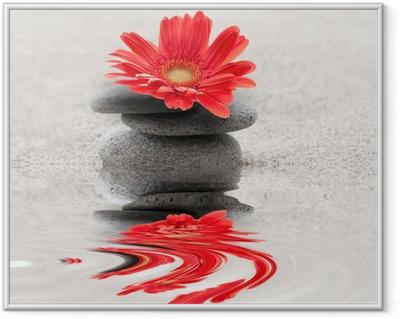 Galets et gerbera reflet zen Framed Poster