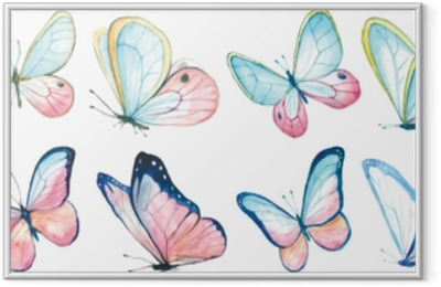 Collection watercolor of flying butterflies. Framed Poster