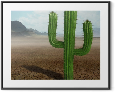 Cactus in the desert Framed Poster