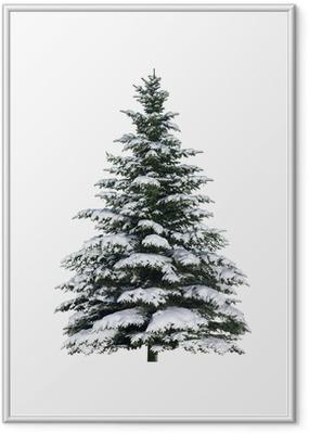 Poster en cadre Tanne im Schnee - Fêtes internationales