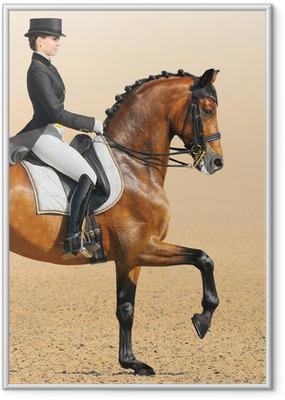 Equestrian sport - dressage, closeup Framed Poster