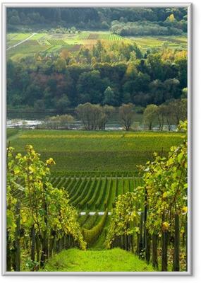 Ingelijste Poster Wijngaarden en bossen