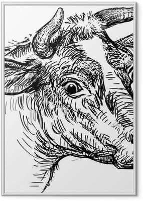 Poster en cadre Tête de vache