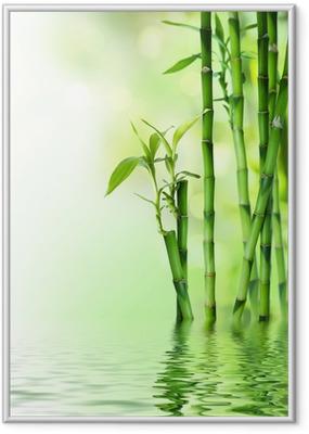 Plakat w ramie Łodygi bambusa na wodzie
