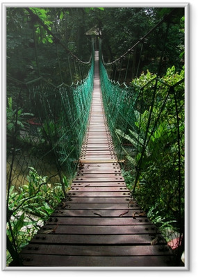 Póster com Moldura suspension bridge in the tropical jungle