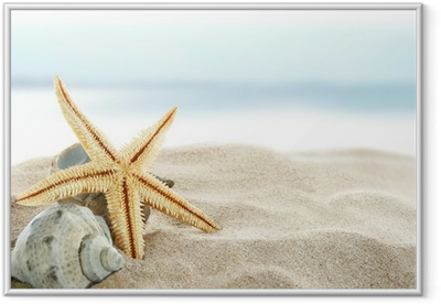 Starfish on the Beach Framed Poster