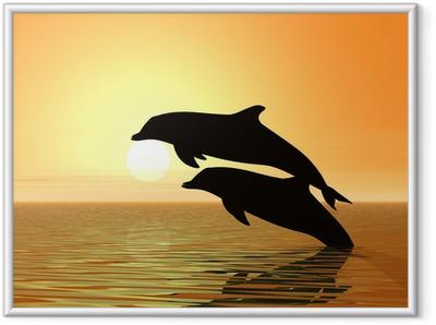Poster en cadre Dauphins et le coucher du soleil
