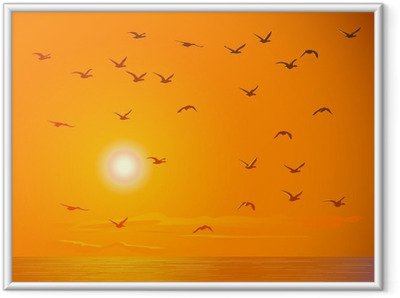 Poster en cadre Flying birds contre orange coucher de soleil. - Oiseaux