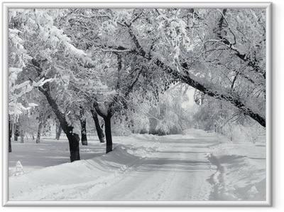 Gerahmtes Poster Winter Park, Landschaft