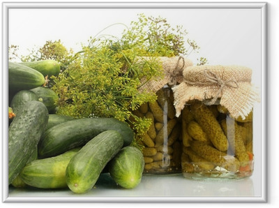 fresh cucumbers, pickles and dill isolated on white Framed Poster