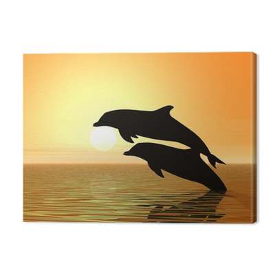 dolphins and sunset Premium prints