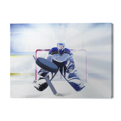 eishockey torwart Premium prints
