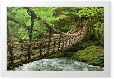 Pont de lianes et bambou Kazura-bashi à Oku Iya, Shikoku Framed Poster