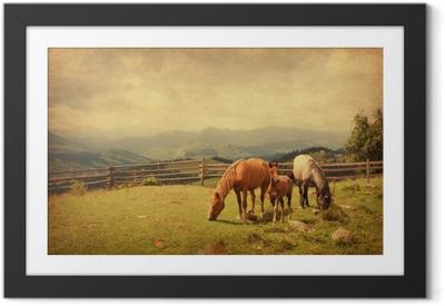 Lámina Enmarcada Dos caballos y potro en el prado. textura de papel.