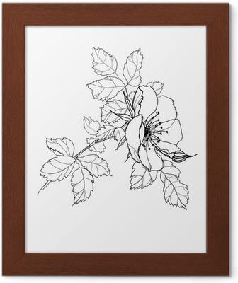Gül çiçek Karakalem Duvar Kağıdı Pixers Haydi Dünyanızı