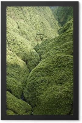 Maui Rainforest. Framed Poster