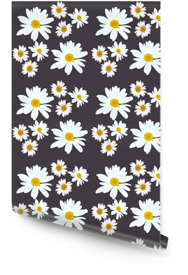 Daisy vector pattern. Beautiful flowers on black background. Wallpaper Roll