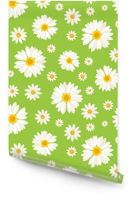 Seamless avec des fleurs de marguerite sur le vert. Vector. Rouleau de papier peint