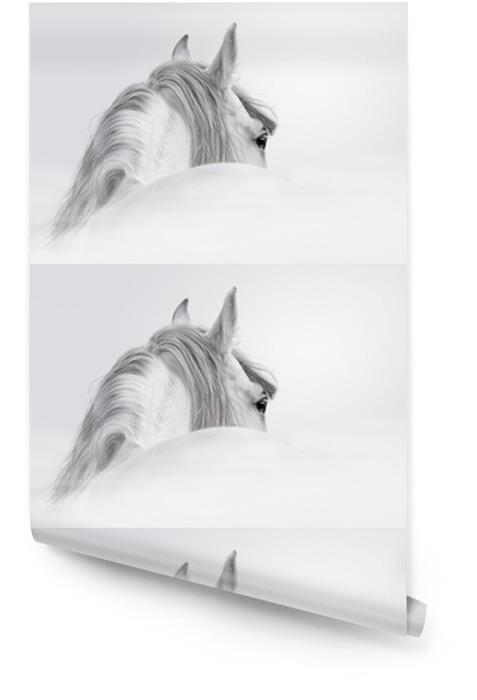 Andaluzyjski Koń w mgle Tapeta w rolce - iStaging